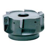 Side Chipper (Bore Type Milling Cutter), Model SIC
