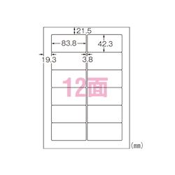Laser P Label, Transparent Type 12 Pieces