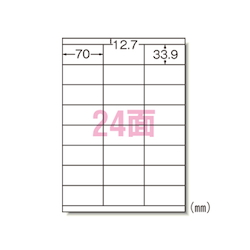 Laser Printer Label, 24 Labels 1,000 Sheets