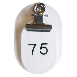 PP Parent/Child Tags, Continuous Numbers 51-100 White