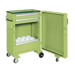 Tool Cabinet Cart with Swing Door