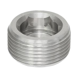 Stainless Steel-Blanking plugs
